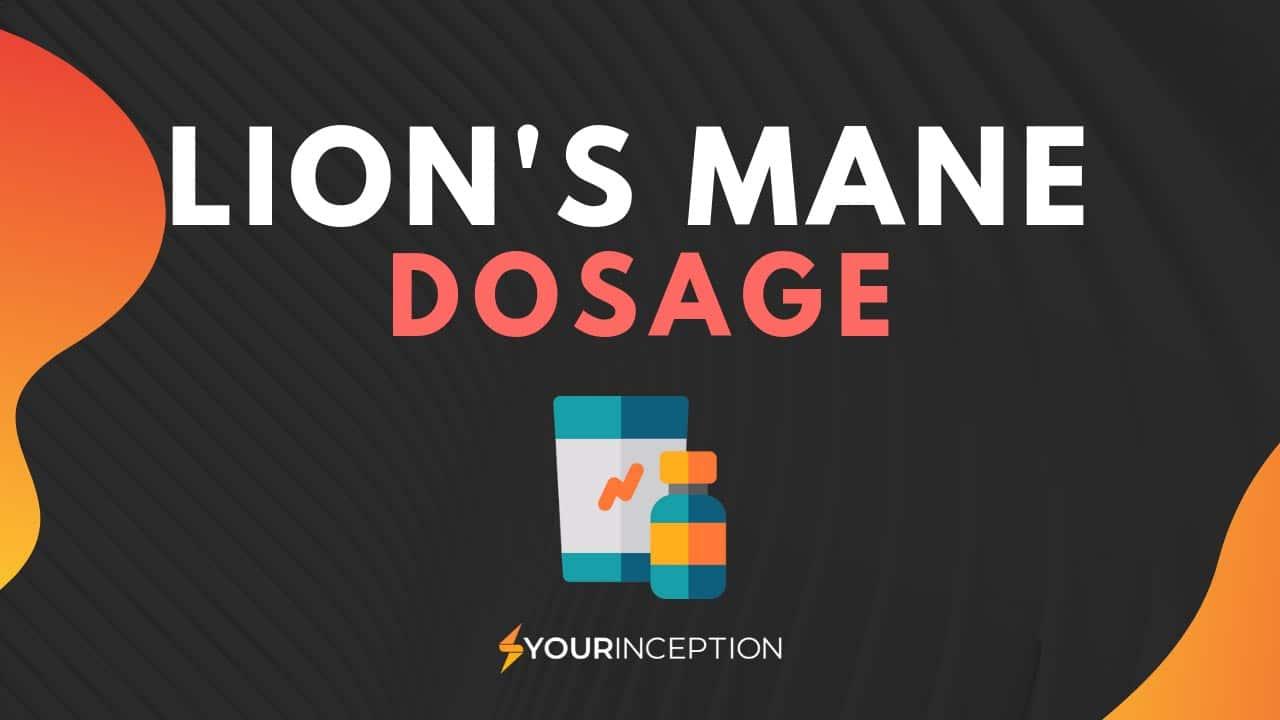 lion's mane dose