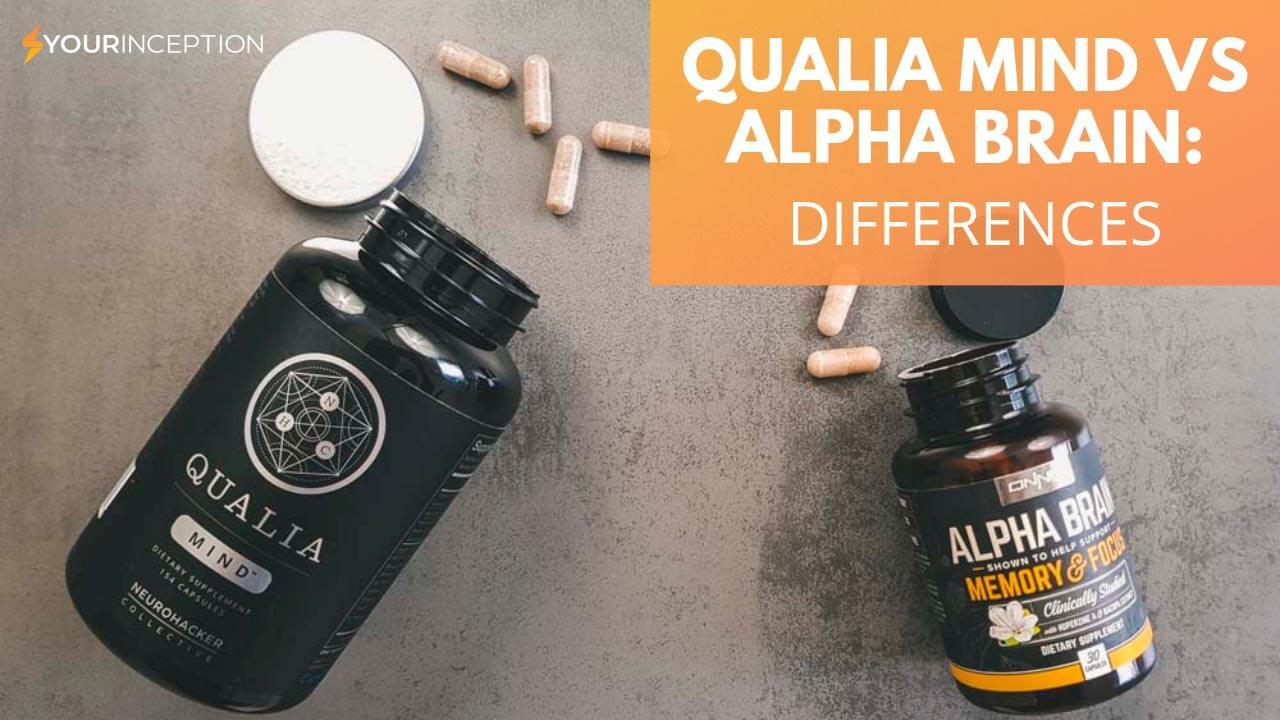 alpha brain vs qualia mind