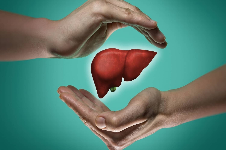 best choline supplement for liver